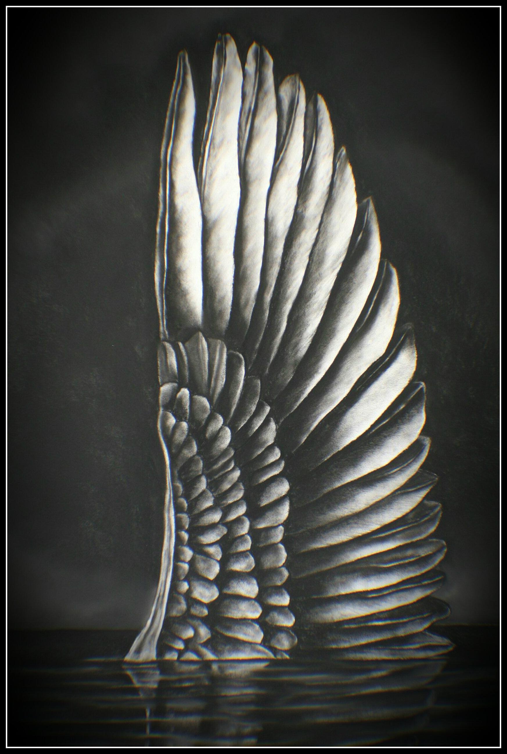 Da Vinci's Wing