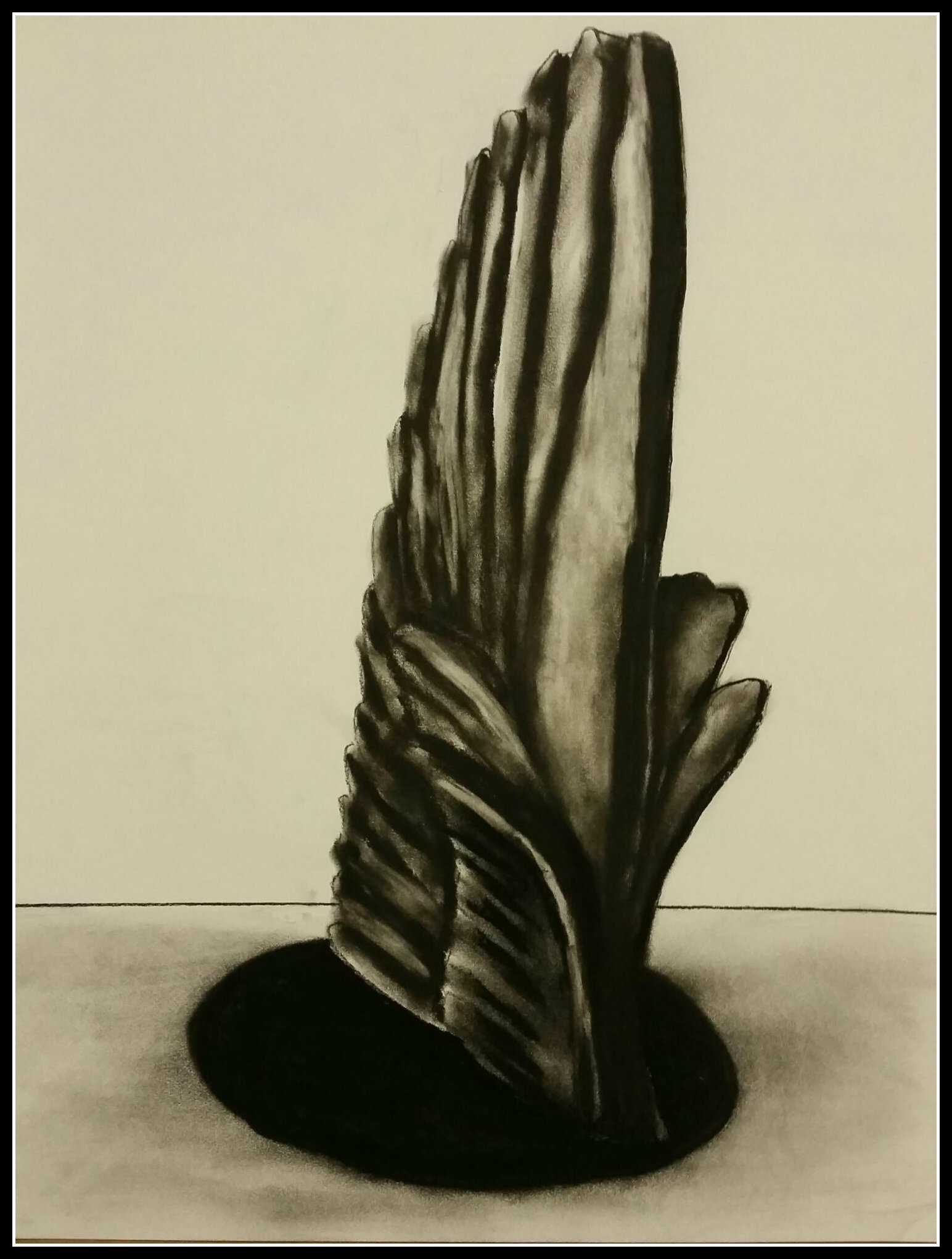 Da Vinci's Wing study